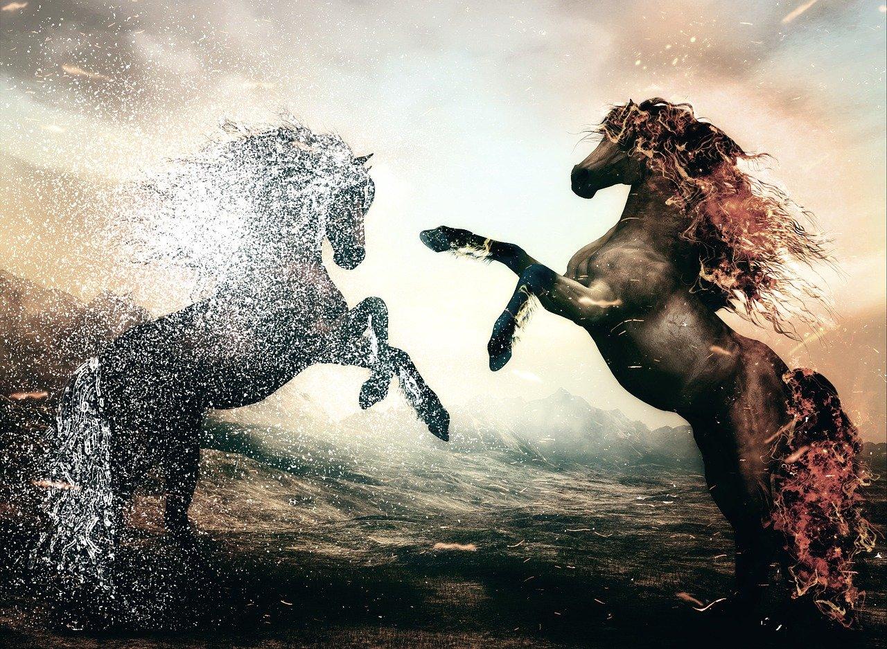 horse-3331416_1280